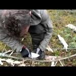 Добывание огня в лесу в сырую погоду