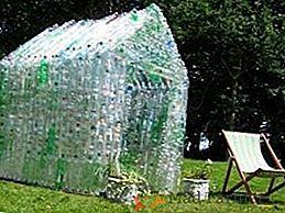 C:UsersdomDesktopКак да направите оранжерия с пластмасови бутилки със собствените си ръце _ Луд Фермер_fileshow-to-make-greenhouse-of-plastic-bottles-with-your-own-hands.jpg